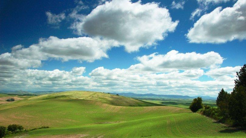 campo-cielo-azul-y-nubes-51fde4128721a