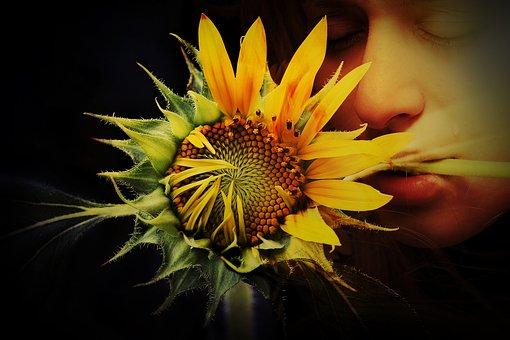 flower-3589870__340