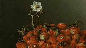 After-Adriaen-Coorte-Still-Life-with-Wild-Strawberries
